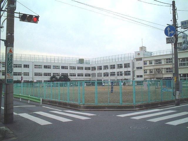 20050320-1.jpg
