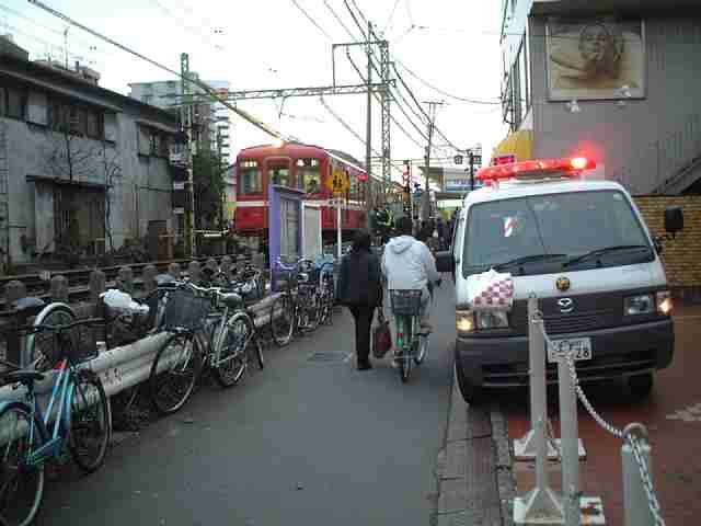 20050329-1.jpg